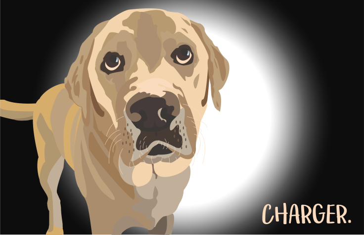 charger-illustration